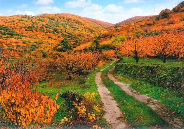 escapadas otoño